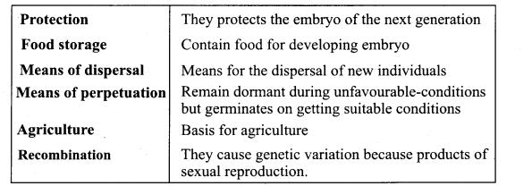 Samacheer Kalvi 11th Bio Botany Chapter 4 Reproductive Morphology 45
