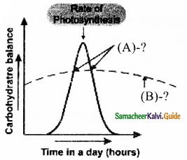 Samacheer Kalvi 11th Bio Botany Guide Chapter 14 Respiration 4