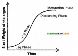 Samacheer Kalvi 11th Bio Botany Guide Chapter 15 Plant Growth and Development 7