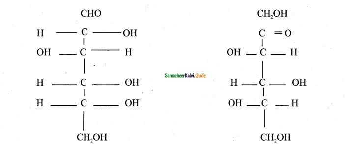 Samacheer Kalvi 11th Bio Botany Guide Chapter 8 Biomolecules 17