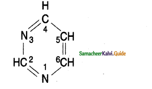 Samacheer Kalvi 11th Bio Botany Guide Chapter 8 Biomolecules 5