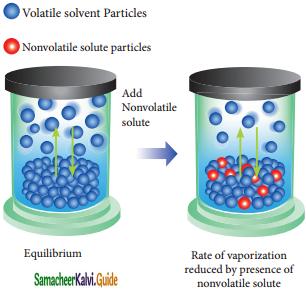 Samacheer Kalvi 11th Chemistry Guide Chapter 9 Solutions 6