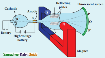 Samacheer Kalvi 12th Physics Guide Chapter 8 Atomic and Nuclear Physics 10