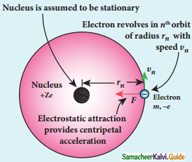 Samacheer Kalvi 12th Physics Guide Chapter 8 Atomic and Nuclear Physics 13