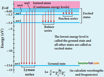 Samacheer Kalvi 12th Physics Guide Chapter 8 Atomic and Nuclear Physics 16