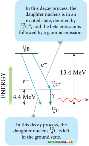 Samacheer Kalvi 12th Physics Guide Chapter 8 Atomic and Nuclear Physics 21