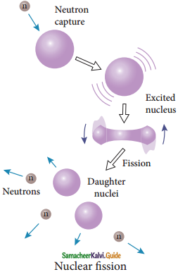 Samacheer Kalvi 12th Physics Guide Chapter 8 Atomic and Nuclear Physics 26