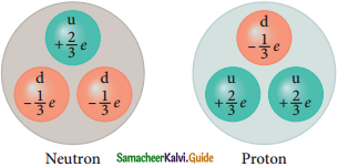Samacheer Kalvi 12th Physics Guide Chapter 8 Atomic and Nuclear Physics 30