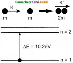 Samacheer Kalvi 12th Physics Guide Chapter 8 Atomic and Nuclear Physics 31