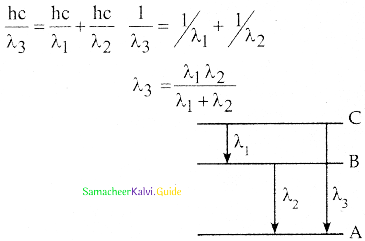 Samacheer Kalvi 12th Physics Guide Chapter 8 Atomic and Nuclear Physics 41