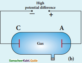 Samacheer Kalvi 12th Physics Guide Chapter 8 Atomic and Nuclear Physics 51
