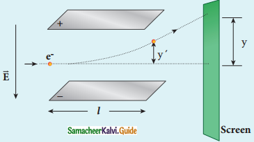 Samacheer Kalvi 12th Physics Guide Chapter 8 Atomic and Nuclear Physics 52
