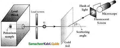 Samacheer Kalvi 12th Physics Guide Chapter 8 Atomic and Nuclear Physics 54