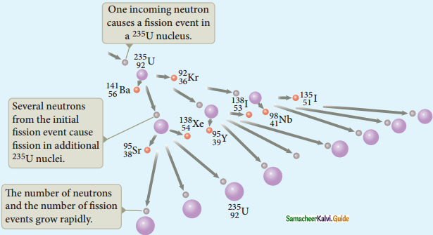 Samacheer Kalvi 12th Physics Guide Chapter 8 Atomic and Nuclear Physics 58