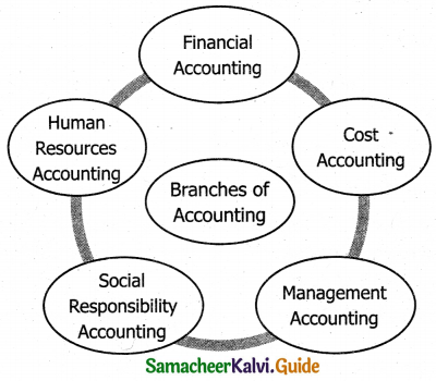 Samacheer Kalvi 11th Accountancy Guide Chapter 1 Introduction to Accounting 3