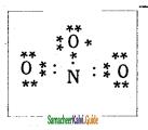 Samacheer Kalvi 11th Chemistry Guide Chapter 10 Chemical Bonding 12