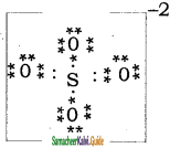 Samacheer Kalvi 11th Chemistry Guide Chapter 10 Chemical Bonding 13