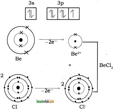 Samacheer Kalvi 11th Chemistry Guide Chapter 10 Chemical Bonding 16