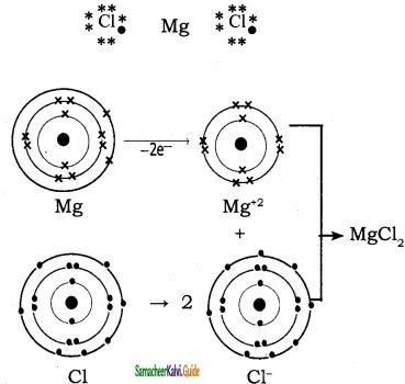 Samacheer Kalvi 11th Chemistry Guide Chapter 10 Chemical Bonding 17