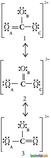 Samacheer Kalvi 11th Chemistry Guide Chapter 10 Chemical Bonding 21
