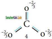 Samacheer Kalvi 11th Chemistry Guide Chapter 10 Chemical Bonding 22