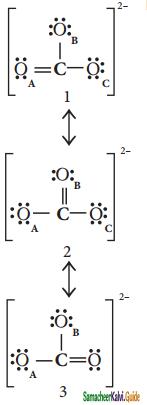 Samacheer Kalvi 11th Chemistry Guide Chapter 10 Chemical Bonding 39