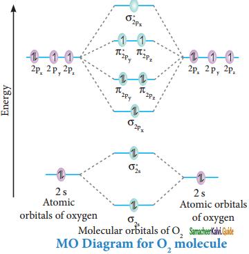 Samacheer Kalvi 11th Chemistry Guide Chapter 10 Chemical Bonding 4