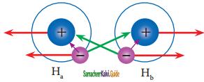 Samacheer Kalvi 11th Chemistry Guide Chapter 10 Chemical Bonding 45
