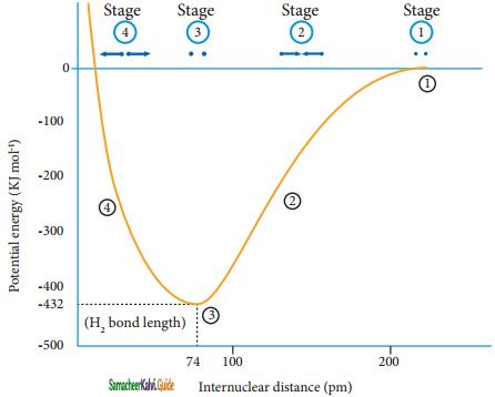 Samacheer Kalvi 11th Chemistry Guide Chapter 10 Chemical Bonding 46