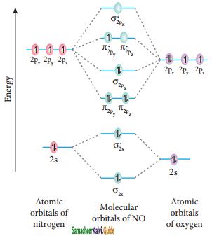 Samacheer Kalvi 11th Chemistry Guide Chapter 10 Chemical Bonding 59