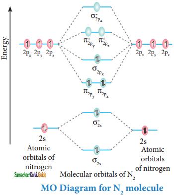 Samacheer Kalvi 11th Chemistry Guide Chapter 10 Chemical Bonding 8