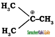 Samacheer Kalvi 11th Chemistry Guide Chapter 12 Basic Concepts of Organic Reactions 13