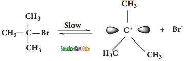 Samacheer Kalvi 11th Chemistry Guide Chapter 14 Haloalkanes and Haloarenes 126