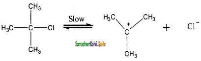 Samacheer Kalvi 11th Chemistry Guide Chapter 14 Haloalkanes and Haloarenes 130