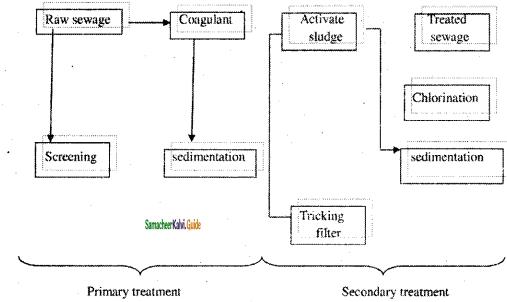 Samacheer Kalvi 11th Chemistry Guide Chapter 15 Environmental Chemistry 7
