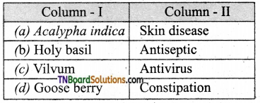 TN Board 12th Bio Botany Important Questions Chapter 10 Economically Useful Plants and Entrepreneurial Botany 8