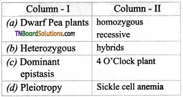 TN Board 12th Bio Botany Important Questions Chapter 2 Classical Genetics 9