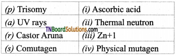 TN Board 12th Bio Botany Important Questions Chapter 3 Chromosomal Basis of Inheritance 10
