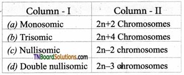 TN Board 12th Bio Botany Important Questions Chapter 3 Chromosomal Basis of Inheritance 13