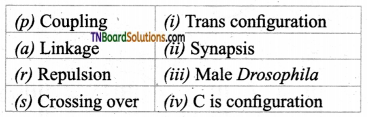 TN Board 12th Bio Botany Important Questions Chapter 3 Chromosomal Basis of Inheritance 8