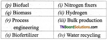 TN Board 12th Bio Botany Important Questions Chapter 4 Principles and Processes of Biotechnology 10