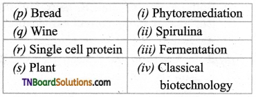 TN Board 12th Bio Botany Important Questions Chapter 4 Principles and Processes of Biotechnology 9
