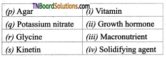 TN Board 12th Bio Botany Important Questions Chapter 5 Plant Tissue Culture 4