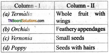 TN Board 12th Bio Botany Important Questions Chapter 6 Principles of Ecology 11