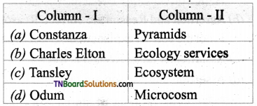 TN Board 12th Bio Botany Important Questions Chapter 7 Ecosystem 10