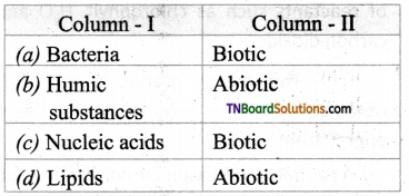 TN Board 12th Bio Botany Important Questions Chapter 7 Ecosystem 11