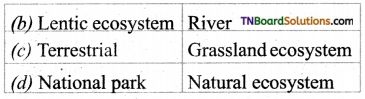 TN Board 12th Bio Botany Important Questions Chapter 7 Ecosystem 15