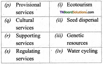 TN Board 12th Bio Botany Important Questions Chapter 7 Ecosystem 8