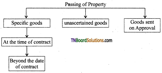 TN Board 12th Commerce Important Questions Chapter 21 The Sale of Goods Act, 1930 1