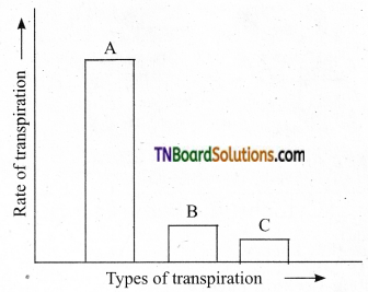 TN Board 11th Bio Botany Important Questions Chapter 11 Transport in Plants 18